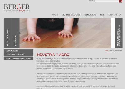 Sitio web empresa ingeniería